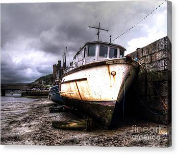Canvas Print featuring the photograph A Rough Ride by Doc Braham