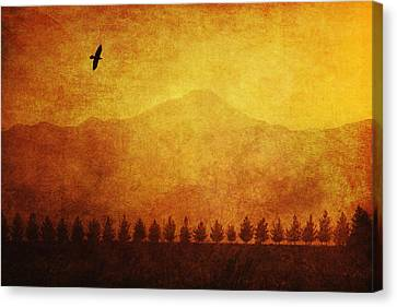 A Row Of Trees And A Raven Silhouetted Canvas Print by Roberta Murray