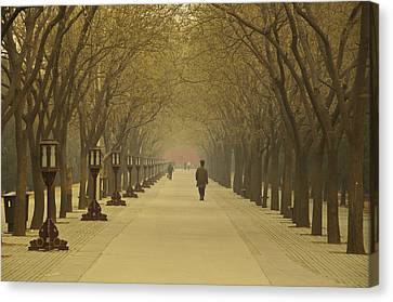 A Royal Stroll Canvas Print by Aaron Bedell