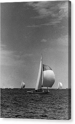 Watercraft Canvas Print - A Sailboat Called Columbia by Toni Frissell