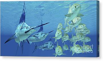 A School Of Ayu Fish Try To Escape Canvas Print by Corey Ford