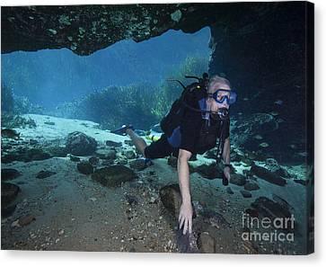 A Scuba Diver Explores The Blue Springs Canvas Print