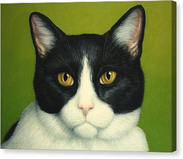 Black And Yellow Canvas Print - A Serious Cat by James W Johnson