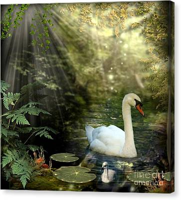 A Shady Brook Canvas Print by Morag Bates