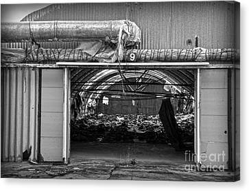A Shed In An Abandoned Mushroom Farm Bw Canvas Print by RicardMN Photography