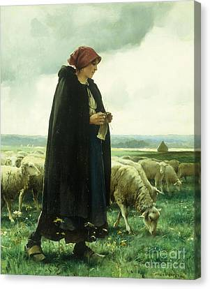 A Shepherdess With Her Flock Canvas Print by Julien Dupre