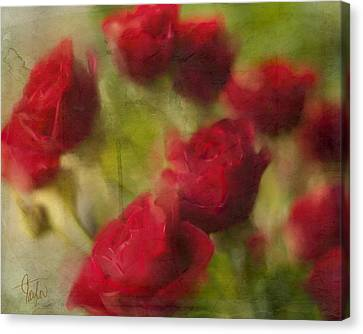 A Shower Of Roses Canvas Print by Colleen Taylor