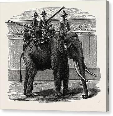 A Siamese War Elephant Canvas Print