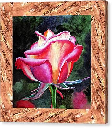A Single Rose The Silky Light Canvas Print by Irina Sztukowski