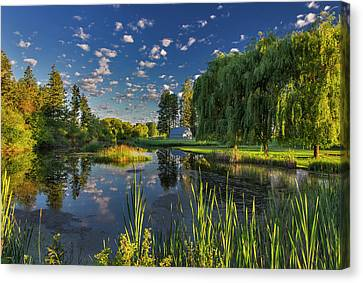 A Slough Of The Flathead River Catches Canvas Print by Chuck Haney