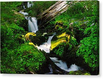A Small Slice Of Paradise Canvas Print by Jeff Swan