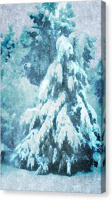 A Snow Tree Canvas Print