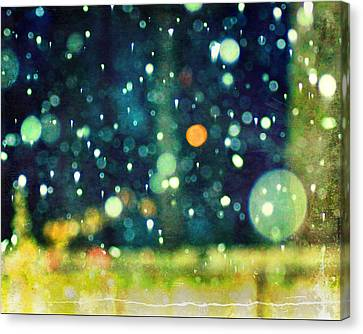 A Snowy Night Canvas Print by Suzanne Barber