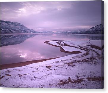 A Snowy Shore Canvas Print by Tara Turner