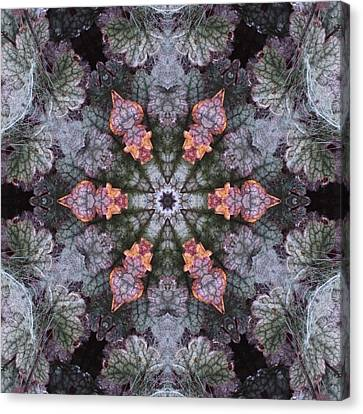 A Spider Web On Coral Bells Canvas Print by Trina Stephenson