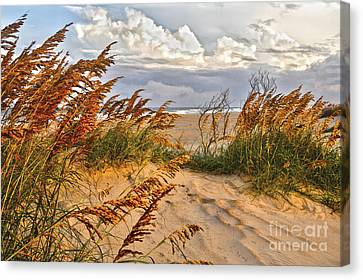 A Splendid Day At The Beach - Outer Banks Canvas Print by Dan Carmichael