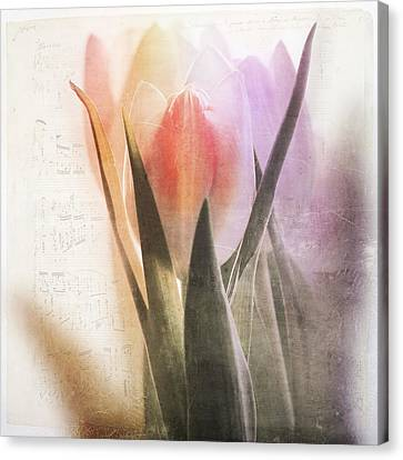 A Spring Song Canvas Print by Heike Hultsch
