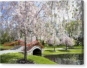 Paul Faust Canvas Print - A Spring Walk by Paul W Faust -  Impressions of Light