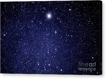 A Star Appeared In The East... Canvas Print by Thomas R Fletcher