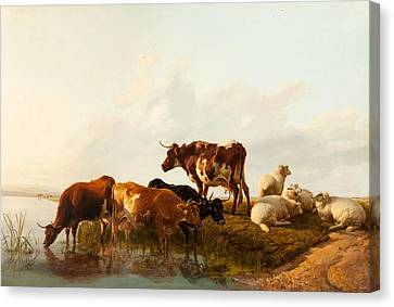 Cow Canvas Print - A Summer Afternoon, 1861 by Thomas Sidney Cooper