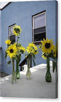 A Sunny Day Canvas Print by Michael Glenn
