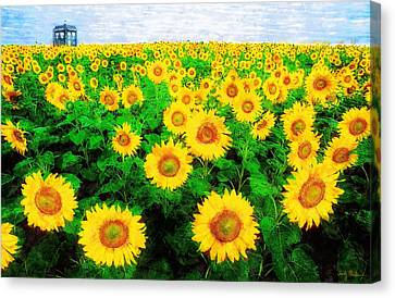 Canvas Print featuring the painting A Sunny Day With Vincent by Sandy MacGowan