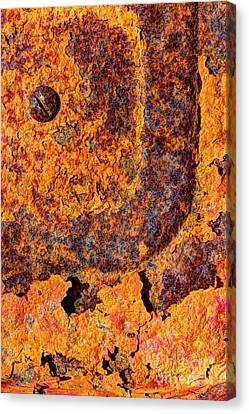 A Tad Rusty Canvas Print by Heidi Smith