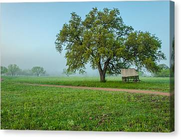 A Texas Morning Canvas Print by Jeffrey W Spencer