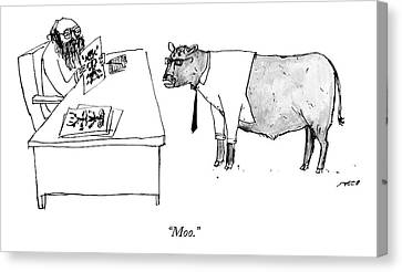 A Therapist Shows A Cow Canvas Print by Edward Steed