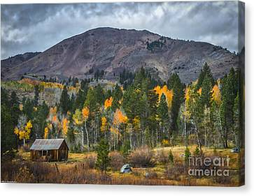 A Time To Remember Canvas Print by Mitch Shindelbower