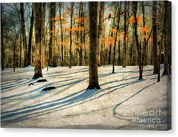 A Touch Of Autumn Canvas Print by Darren Fisher