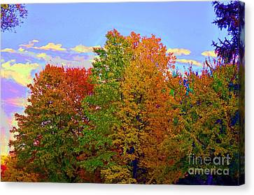 Canvas Print featuring the photograph A Touch Of Neon by Judy Wolinsky
