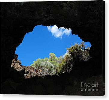 Canvas Print featuring the photograph A Touch Of Sky by Debra Thompson