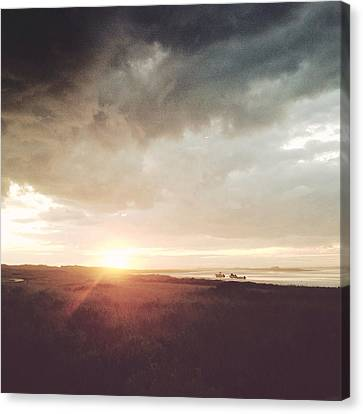 A Touch Of Turner Canvas Print by Natasha Marco