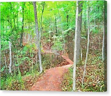 A Trail Through The Woods Canvas Print