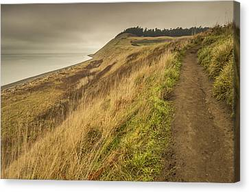 A Trail's Beginning Canvas Print by Calazone's Flics