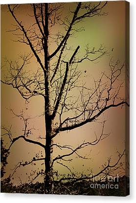 A Tree By The Lake Canvas Print