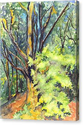 A Tree In Dunkeld Scotland Canvas Print by Carol Wisniewski