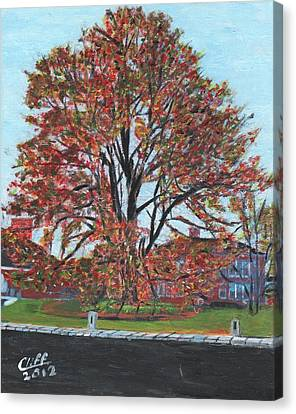 A Tree In Sherborn Canvas Print