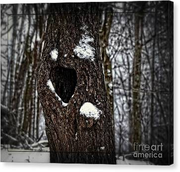 A Tree With Heart Canvas Print by Brenda Bostic