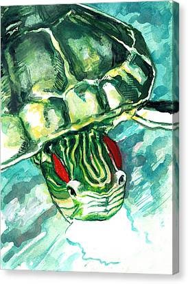 A Turtle Who Likes To Eat Fish Canvas Print