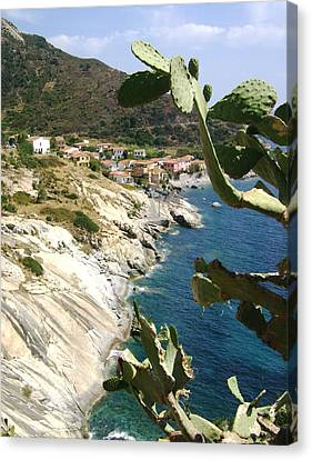 A Typical Bay Of Elba Island Canvas Print by Giuseppe Epifani