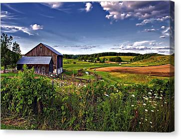 A Verdant Land II Canvas Print by Steve Harrington