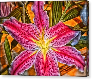 A Vibrant Lily For Your Decor Canvas Print by Thomas Woolworth