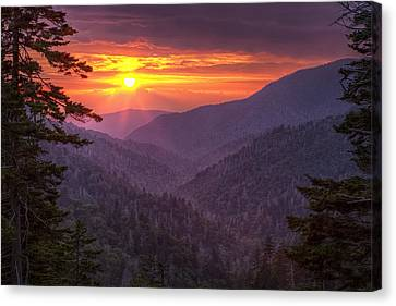A View At Sunset Canvas Print by Andrew Soundarajan