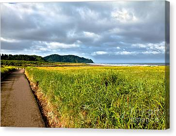 Seacape Canvas Print - A View From Discovery Trail by Robert Bales