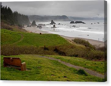 A View Of The Ocean  Canvas Print