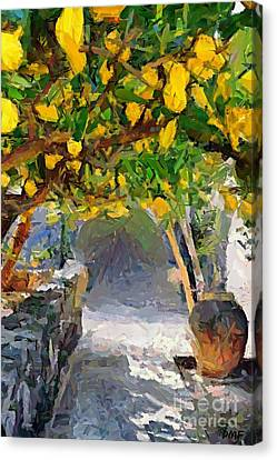 A Voult Of Lemons Canvas Print