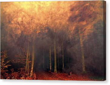 A Waking Dream. Canvas Print
