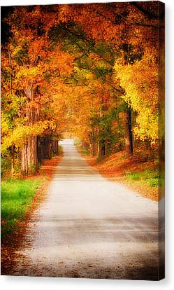 A Walk Along The Golden Path Canvas Print by Jeff Folger